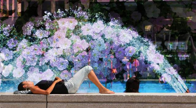 Flowers Splash - Royalty-Free Stock Imagery