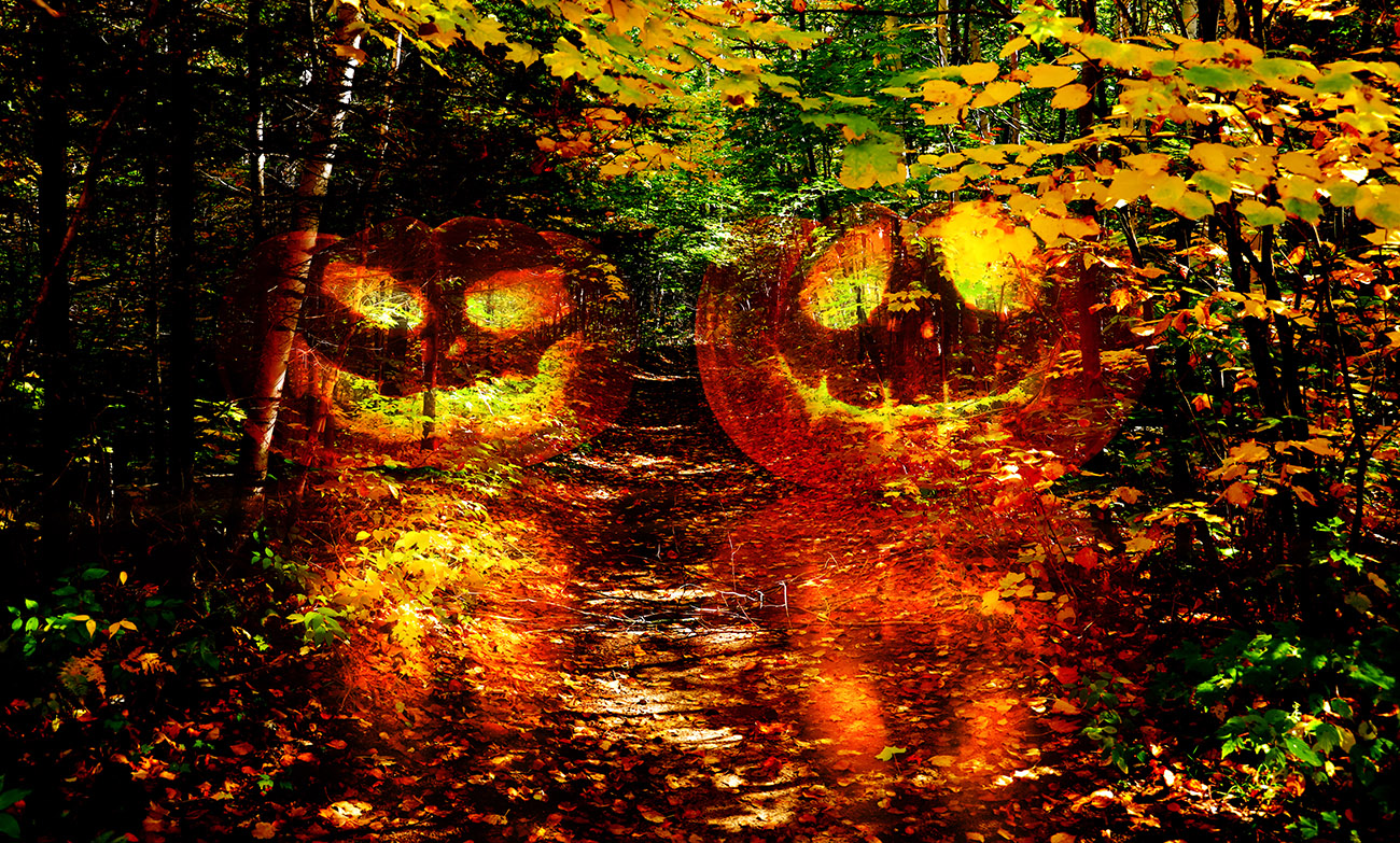 Halloween Scary Wood 1 - Royalty-Free Stock Imagery