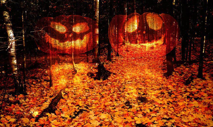 Halloween Scary Wood 2