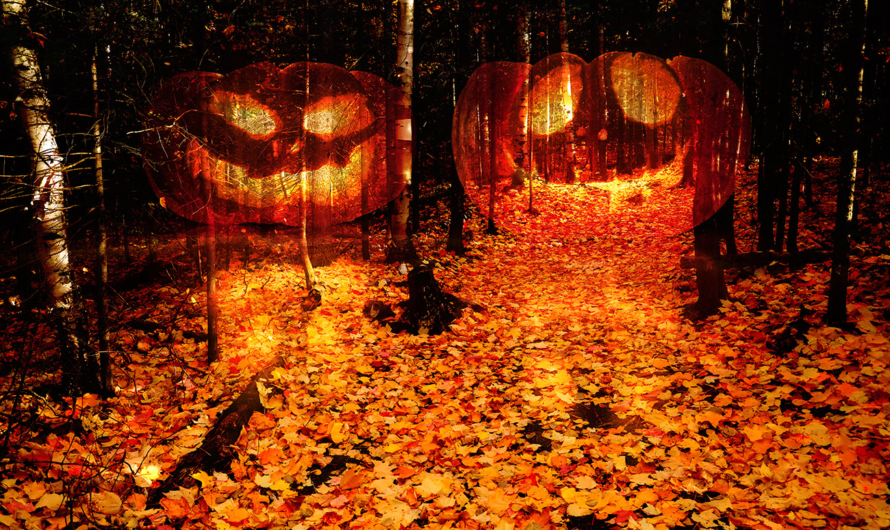 Halloween Scary Wood 2 - Royalty-Free Stock Imagery