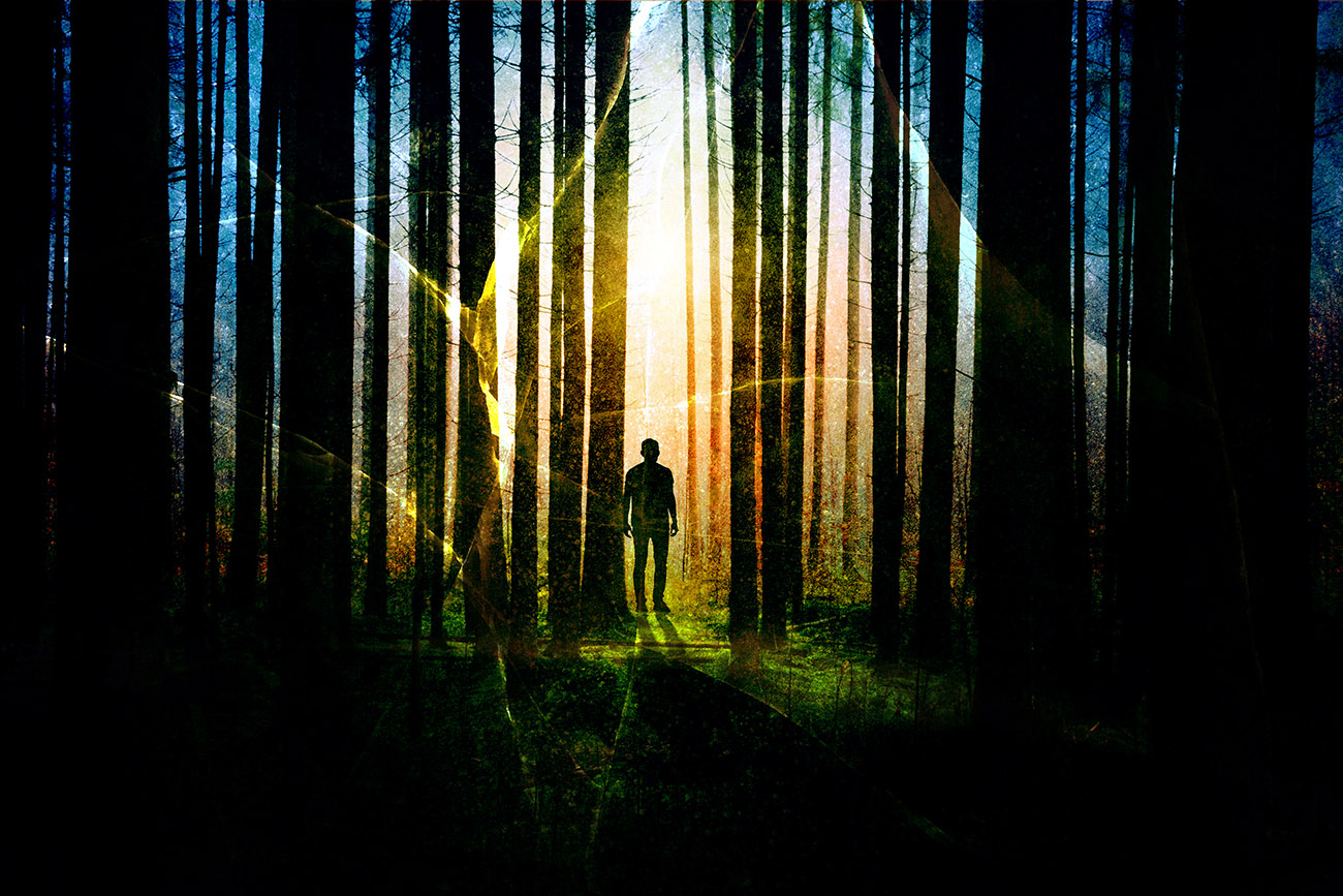 Surreal Apocalyptic Woods 01 - Royalty-Free Stock Imagery