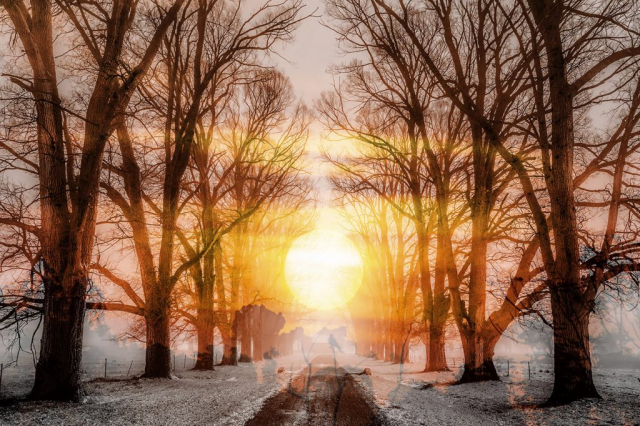Wintery Road 01 - Royalty-Free Stock Imagery