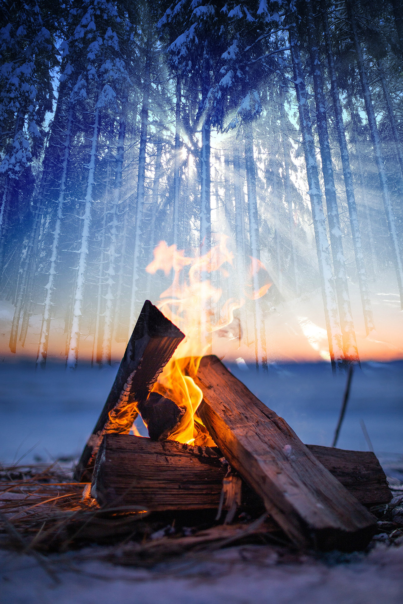 Wintery Wood Fire 01 - Royalty-Free Stock Imagery