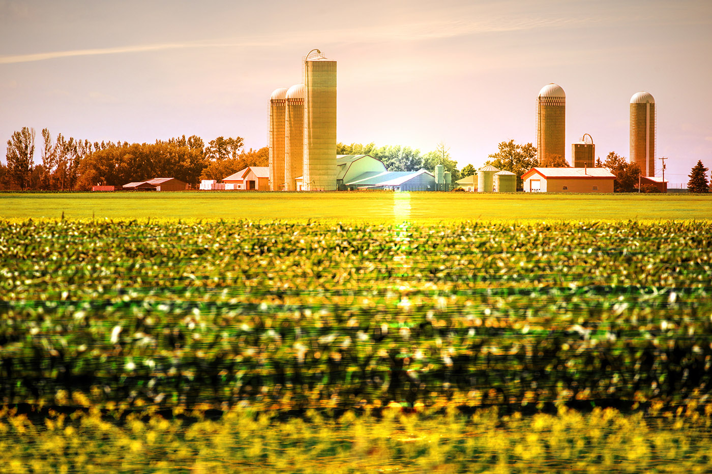 Modern Farmland and Agriculture Real Estate - Royalty-Free Stock Imagery