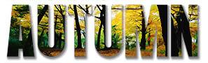 Autumn Imagery